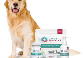 Canine Biologics