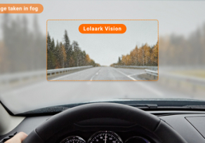 Lolaark Vision